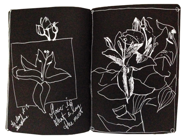flowerDrawing on black paper